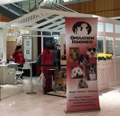 Holiday Pet Adoptions at Galleria Dallas